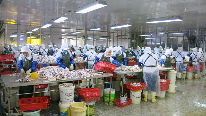 Những quy định của ban quản lý khu công nghiệp đà nẵng