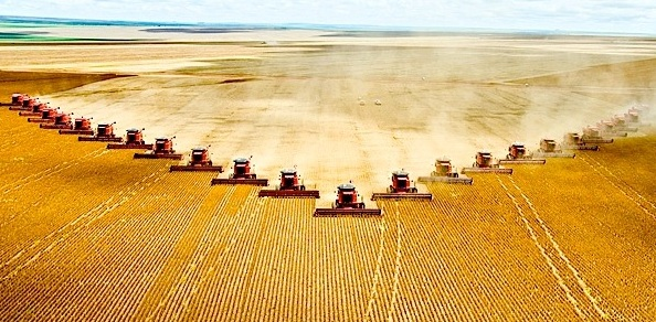 Image result for large scale agriculture