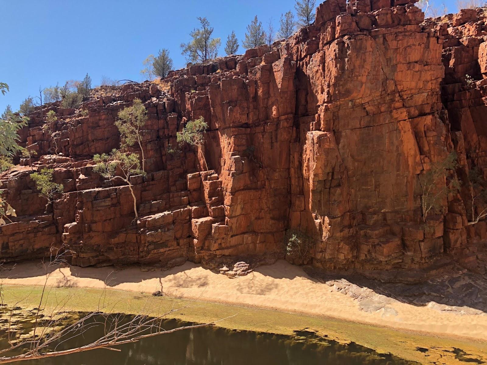 MEDIA:Alice Springs (Oct 2018):Day 2 (Friday):Ormiston Gorge:IMG_8062.jpg