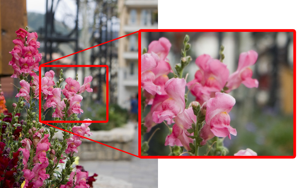 Illustration - Cropping a portion of a large image