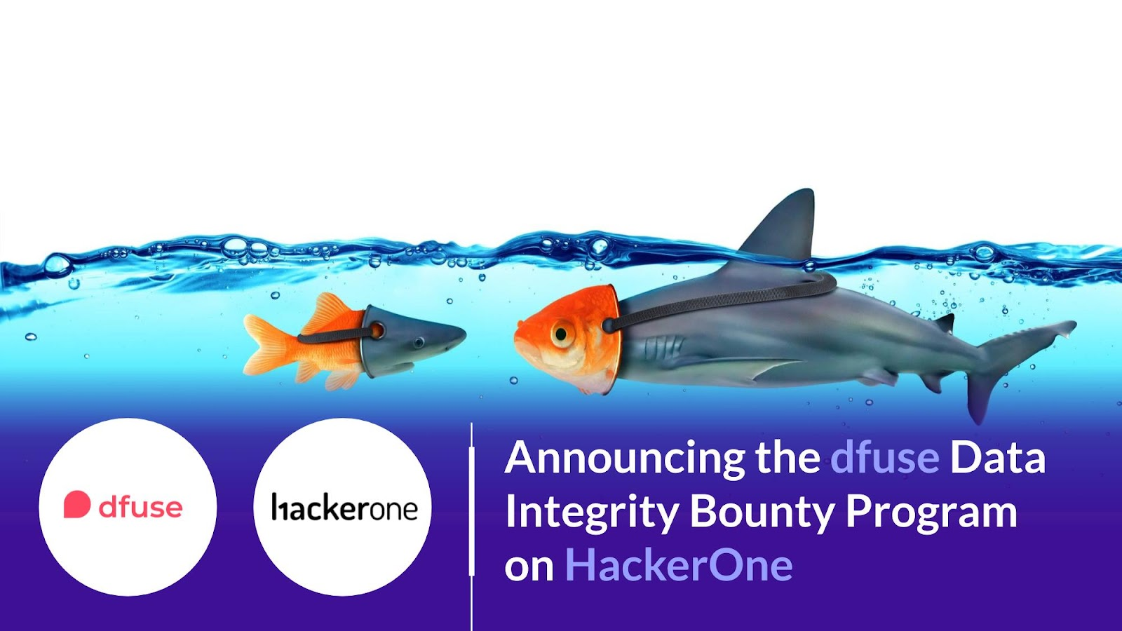 Announcing the dfuse Data Integrity Bounty Program on HackerOne