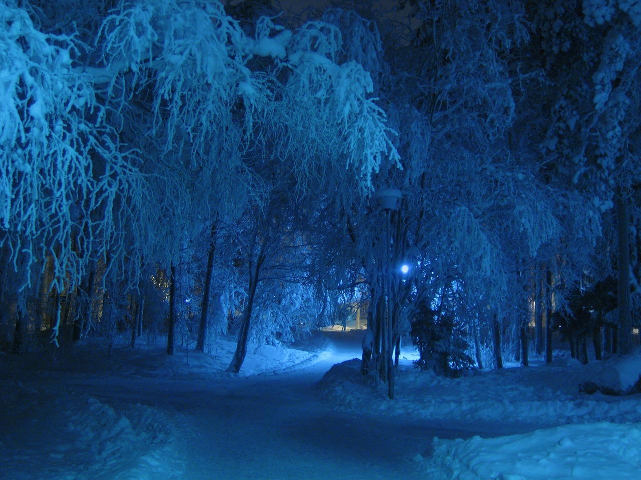 winter-69926_1280.jpg