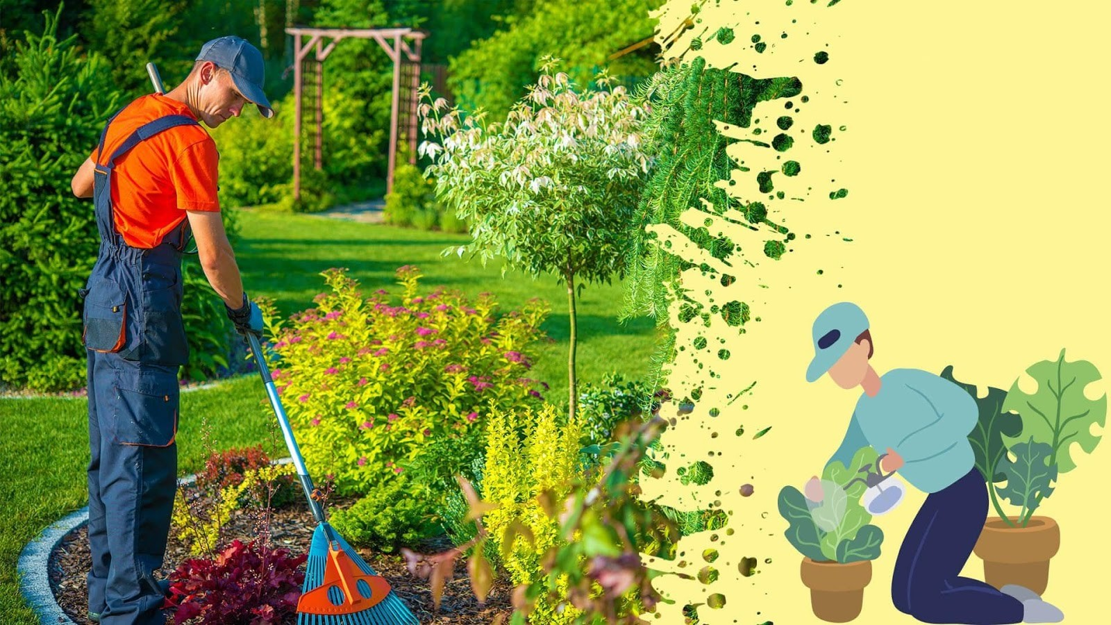 Cần chuẩn bị đất tròn trước khi chăm sóc cây  xanh