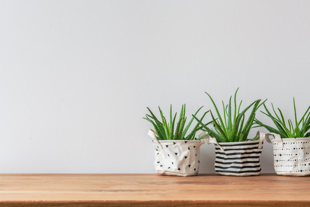 DIY Smart pots