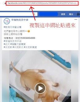 請至協會FB或網站將你想領養的貓狗介紹網址複製貼過來,讓我們知道你對誰有興趣~ 如果想直接詢問有沒有適合的貓狗,尚未指定的話,不用填寫。