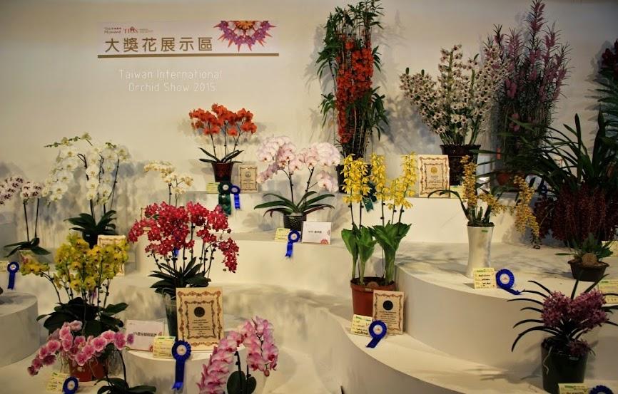 2015 台灣國際蘭花展-4
