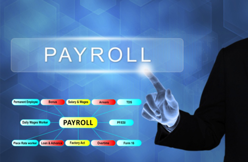 Payroll Management Software, For Payroll Management Software