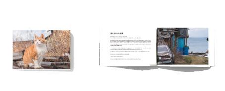天売島シリーズ全展示作品を収録