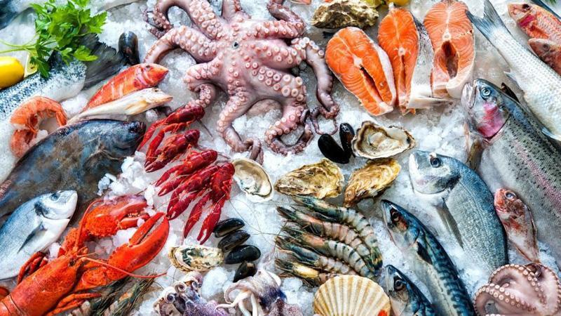 Kết quả hình ảnh cho hải sản