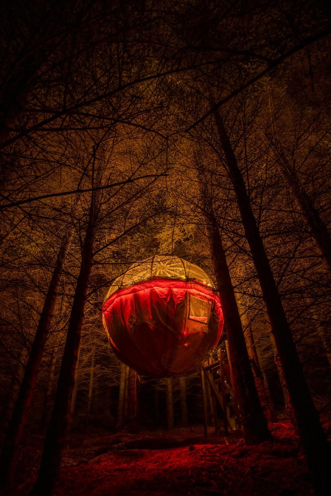tree bubble, iceland, bubble hotel, hanging tree bubble