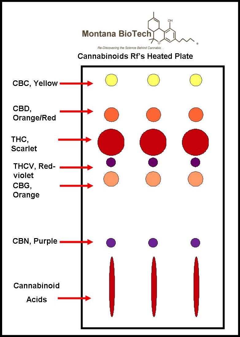 COLOR AND SIZE INDICATES THC AND CBD LEVELS