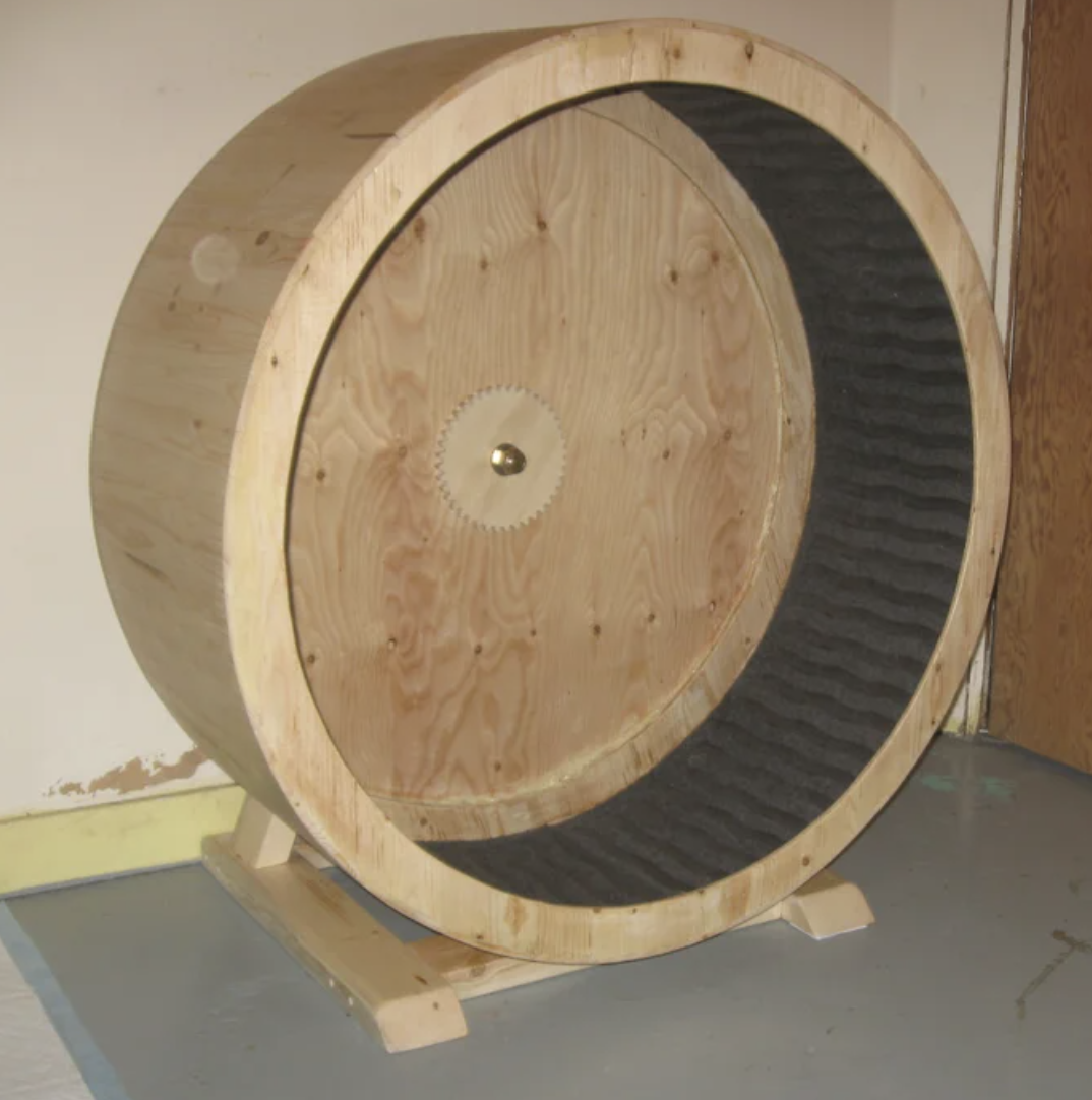 DIY cat exercise wheel
