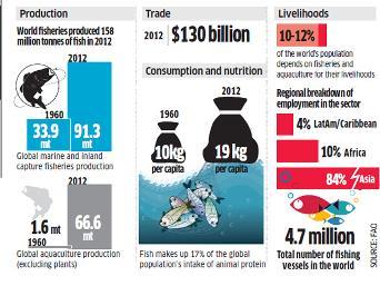 World Fisheries & Aquaculture