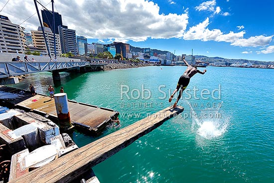 Image result for Wellington Waterfront