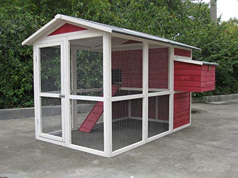 large chicken coops