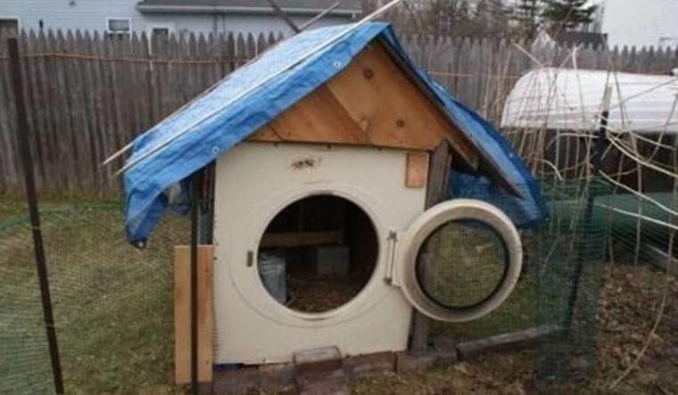 The Laundry Dog House