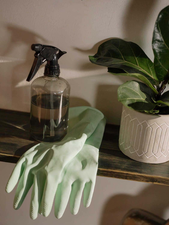Wie oft die Wohnung putzen? (7 Tipps)