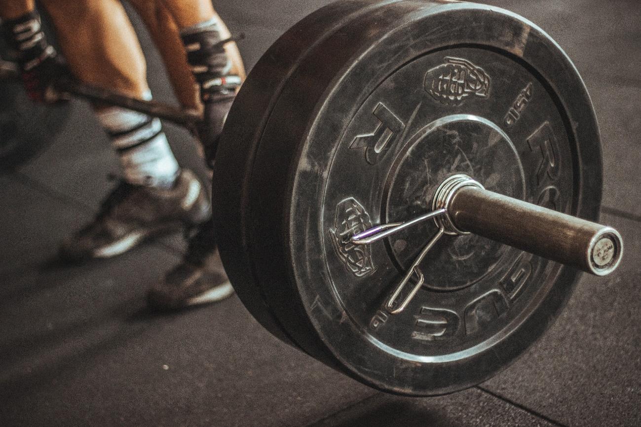 rendimento físico e abacate
