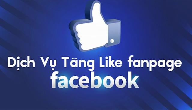 Dịch vụ tăng like facebook uy tín nhất tại TPHCM