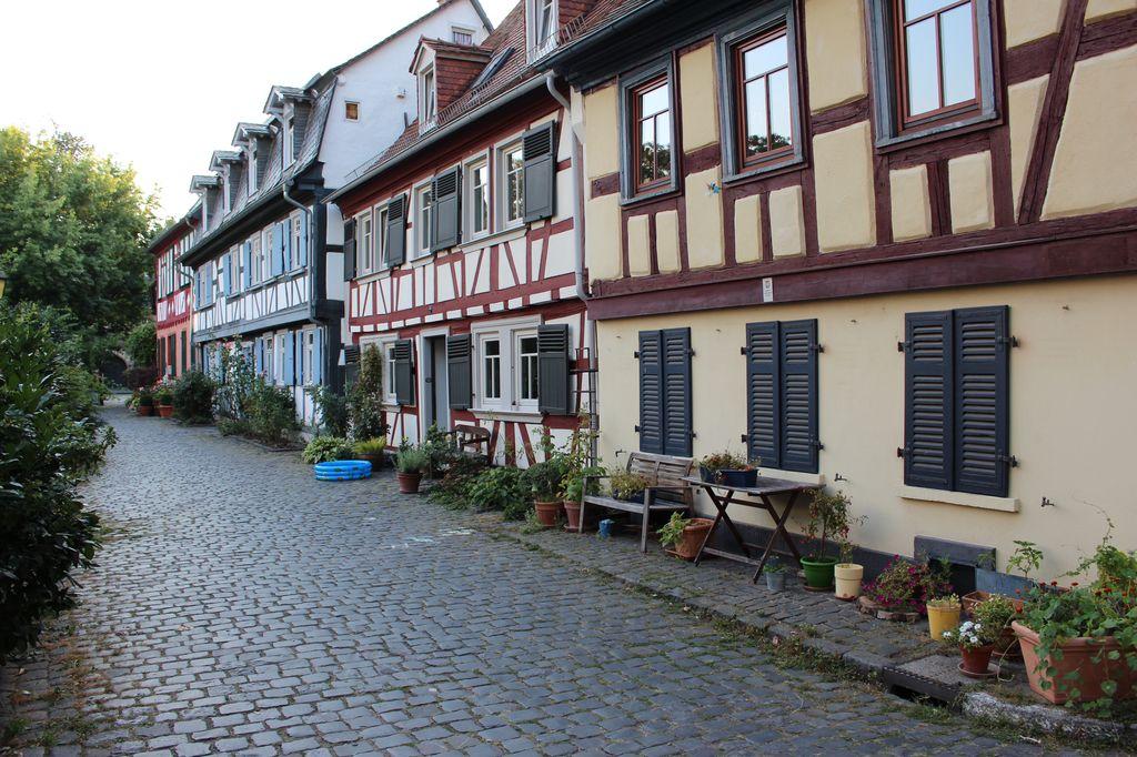 frankfurt-am-main_8.jpg