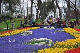 Bunga Tulip di Emirgan Park