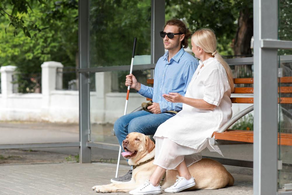 No Brasil, há cerca de 35 milhões de pessoas com deficiência visual. (Fonte: Shutterstock)