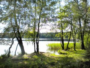 Природа озера 4