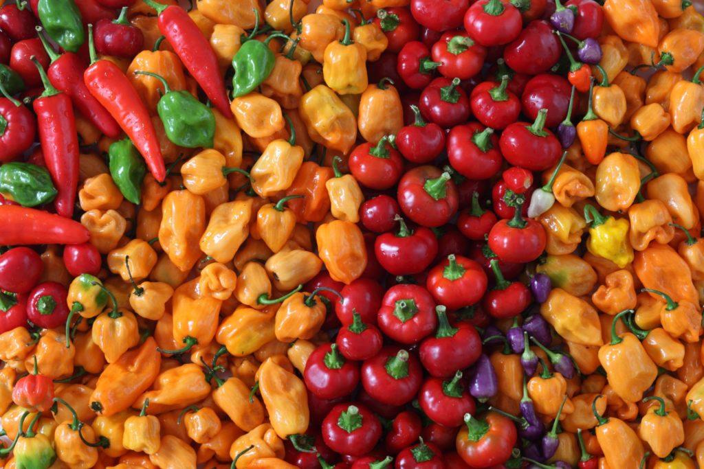 Varieties of Summer Peppers