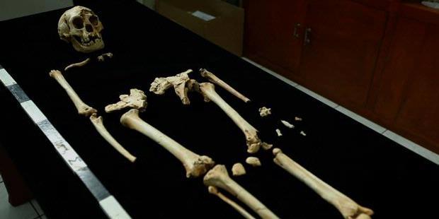 1242557-fosil-homo-floresiensis-temuan-tim-arkenas-620X310.jpeg