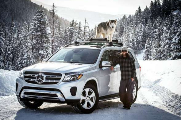 Team up with Mercedes, Loki the Wolf Dog and Kelly Lund