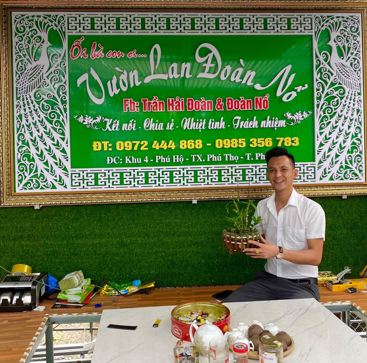 Nghệ nhân Trần Hải Đoàn chia sẻ bí quyết trồng lan thành công - Ảnh 5