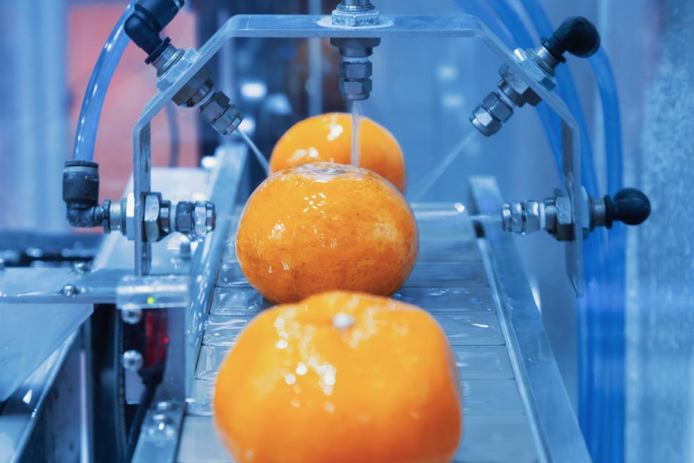 Alta demanda industrial e redução de produção devem segurar alta de preços da laranja em 2021. (Fonte: Shutterstock/Gumpanat/Reprodução)