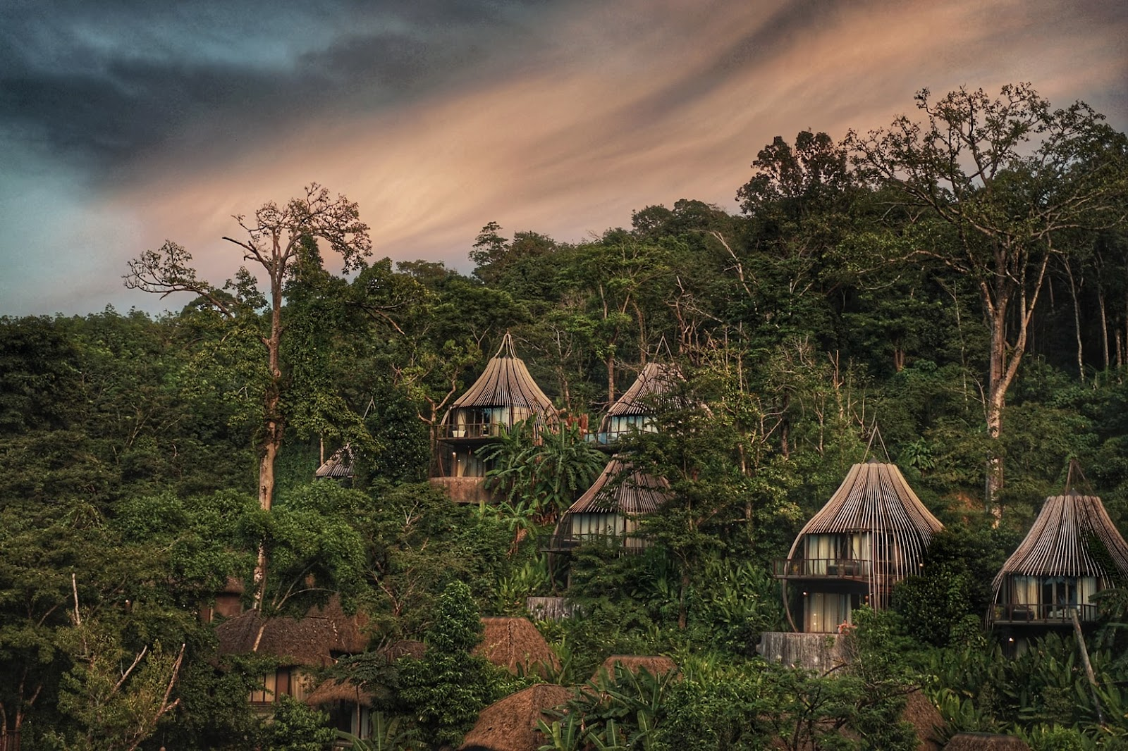 treehouses among the nature