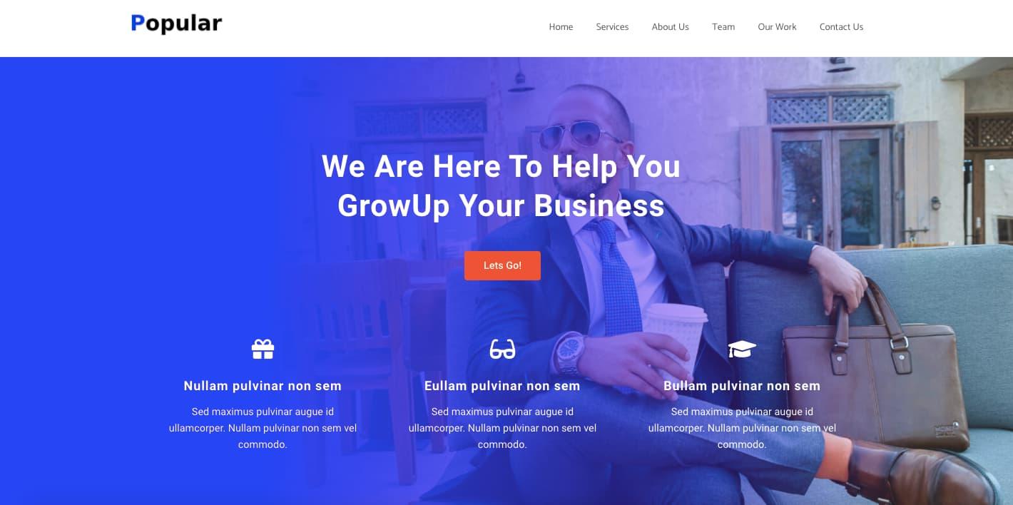 Zita WordPress Theme Demo