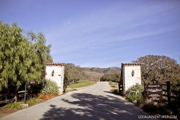 Holman Ranch Carmel Valley California.