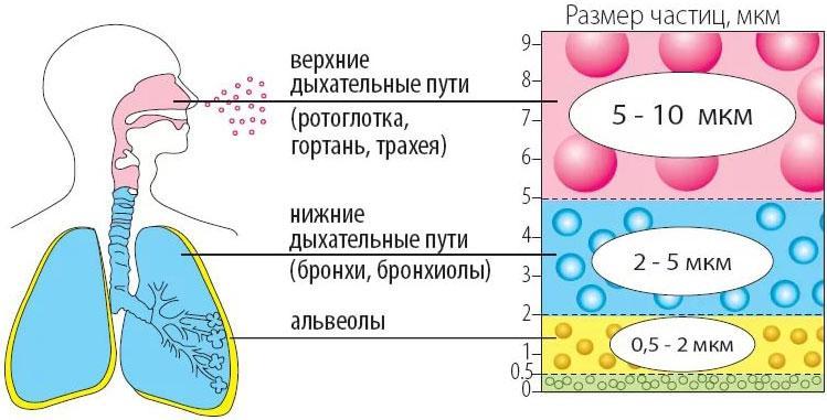C:\Users\Teta\Desktop\1507712116_nebulayzer-dlya-novorozhdennyh.jpg