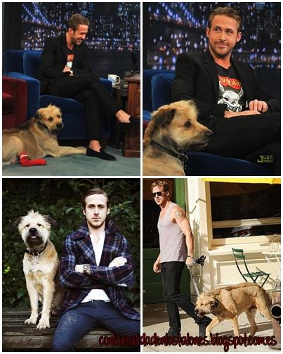 Ryan Gosling y su mascota George <3