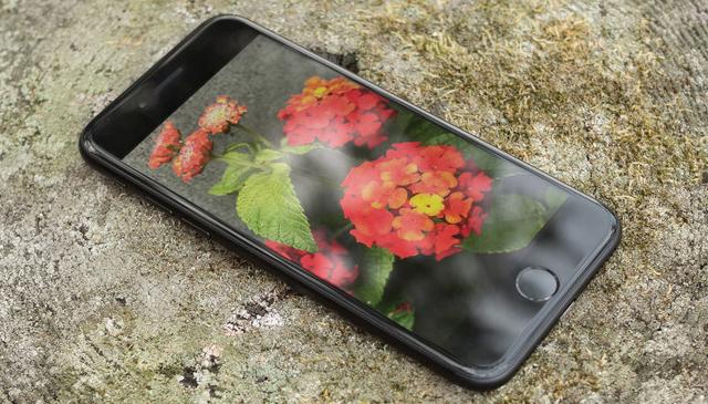 Thay Camera Sau iPhone 7/7Plus Lấy Ngay