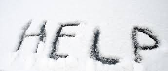 Image result for surviving in the snow