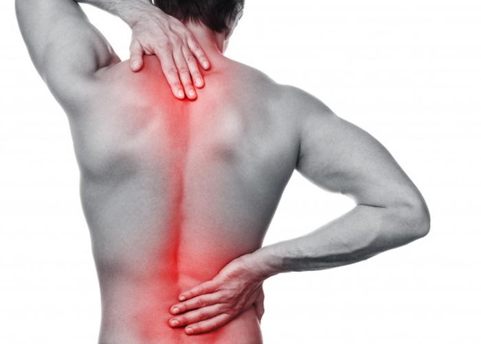 Tình trạng đau lưng mỏi gối rất phổ biến