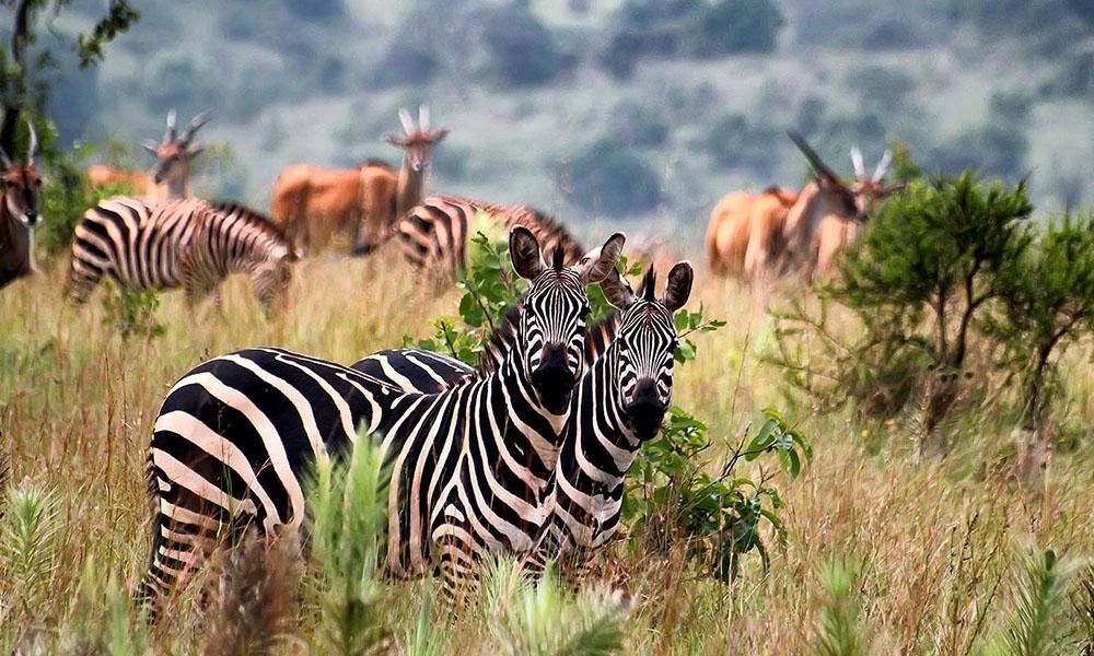 best places to visit in rwanda