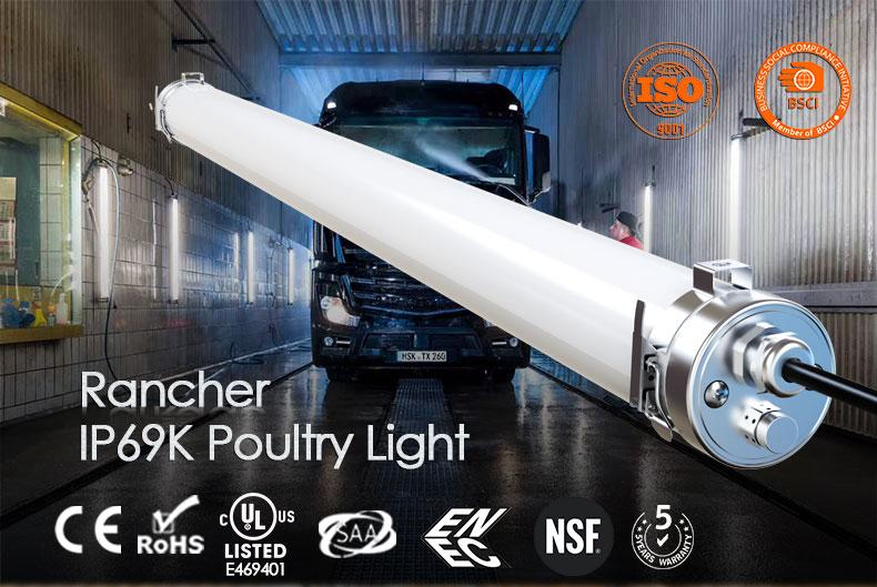 Rancher LED poultry lights are best for Managing Your poultry Sheds