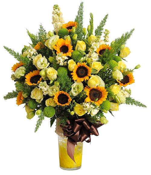 Hoa hướng dương – lời chúc trao gửi niềm tin và hi vọng