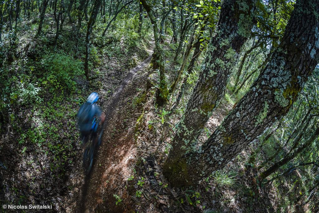 Oaxaca Mountain Bike Tours | Bici y Montaña
