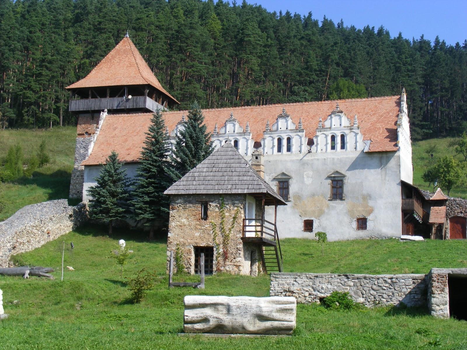 http://www.turistintransilvania.com/wp-content/uploads/2012/11/castelul-lazar.jpg