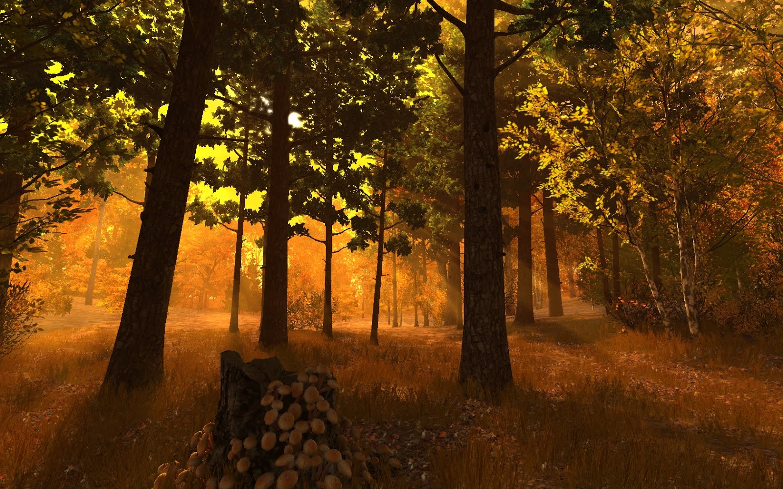 Autumn Forest Screenshot 01.jpg
