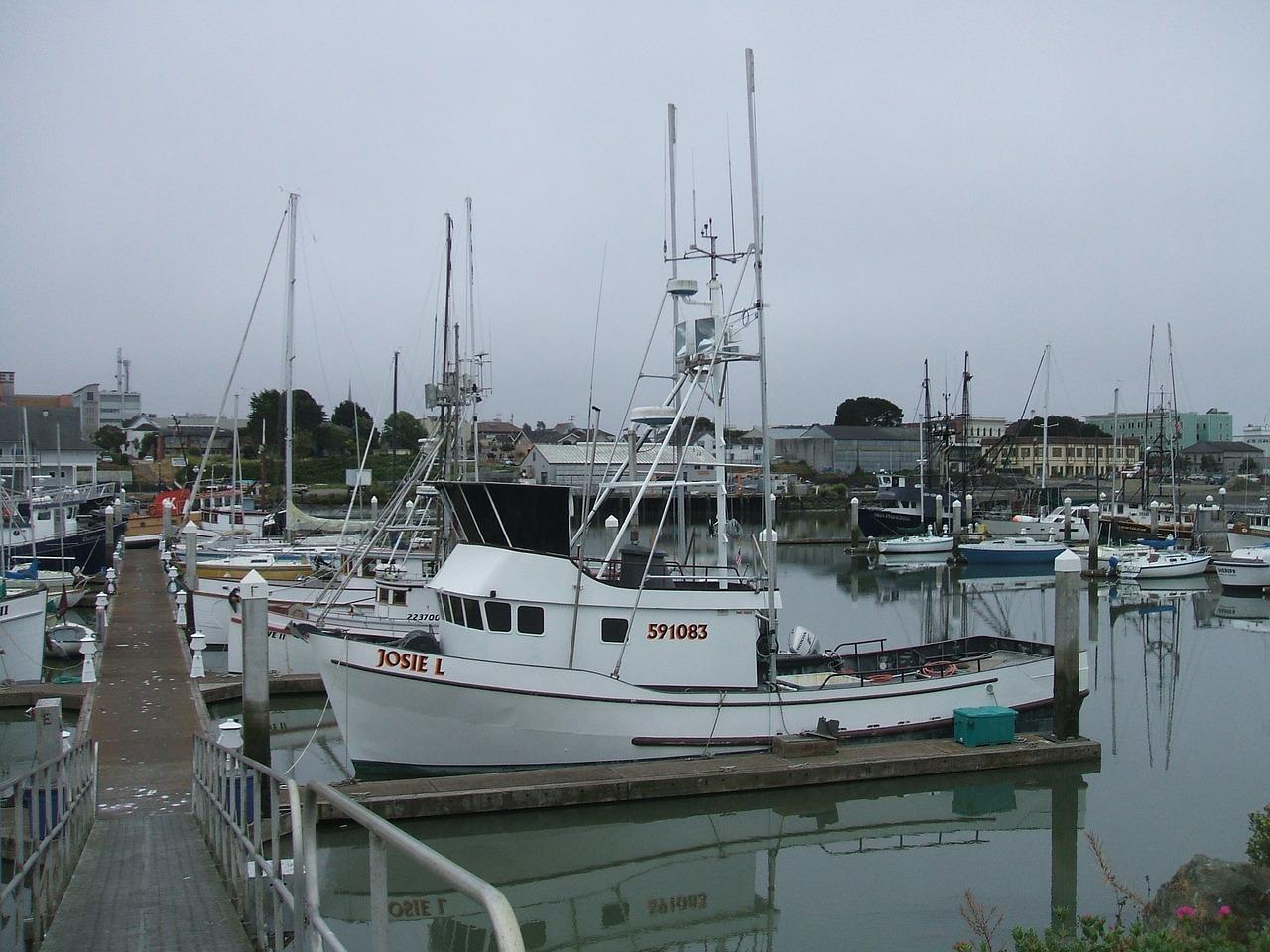 Semi-Displacement Hull Boats