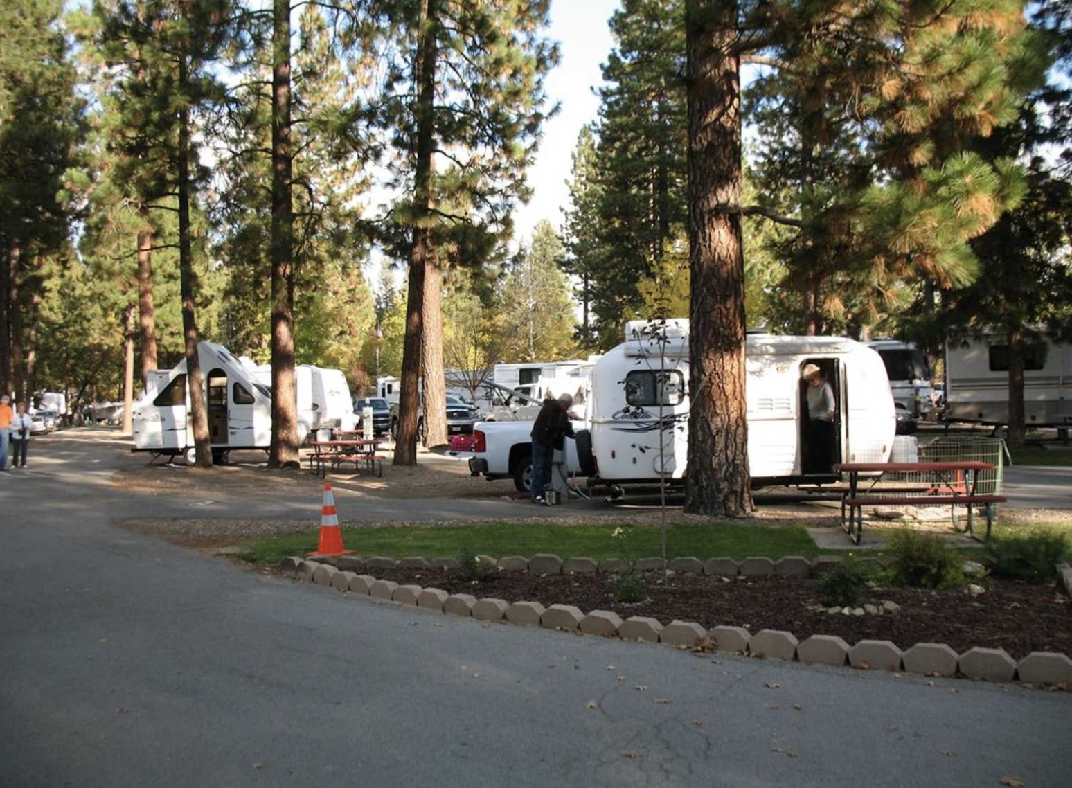 RVs parked next to trees at Pioneer RV campground.
