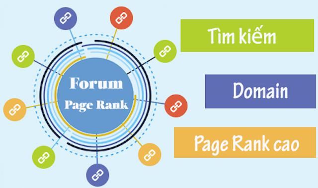 forum đặt backlink chất lượng là gì thường có chỉ số DR cao