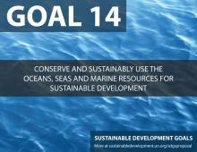 http://cf.cdn.unwto.org/sites/all/files/resize/images/sdg14-220x170.jpg